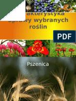 Technologia uprawy roślin.pptx