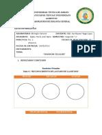 Division Celular Informe 3