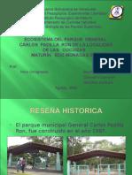 Plantas en  Parque Padilla Ron