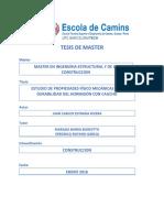 TESIS DE MASTER.pdf