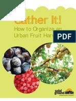 How to Organize an Urban Fruit Harvest