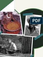 2 - Diversidade Cultural Brasileira
