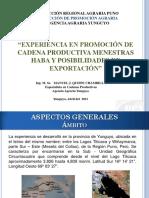 experiencia_cp_haba.pdf