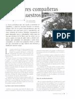 Flores compañeras de nuestros frutales.pdf