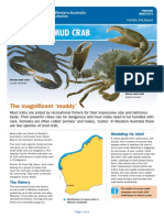 fact_sheet_mud_crab.pdf