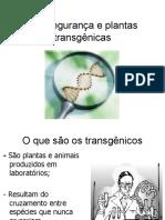 20238880-biosseguranca-e-plantas-trangenicas.pdf
