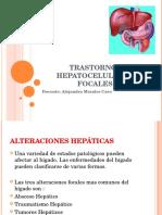 TRASTORNOS HEPATOCELULARES FOCALES