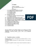 Tema1TeoriadeCampos.pdf