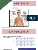 Anemia Fisiopato