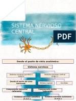 sistema nervioso central ,histología