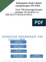Program Smdgs Hiv