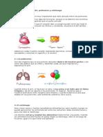 Funciones de Los Organos