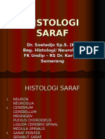 Histologi Saraf Revisi (1)