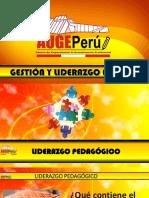 LIDERAZGO PEDAGÓGICO.pdf