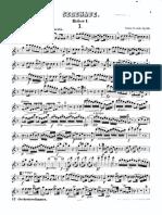 Dvorak Serenade for Winds - Oboe.pdf