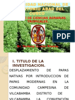 Papa Nativa Vilcabamba - Tesis