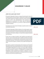 CAP06 COMITE DE SST.pdf