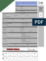 Formato-Basico INM - Instrucciones