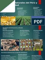 Recursos Naturales Del Perú y Biodiversidad