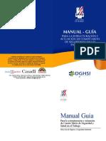 Manual Guia DGHSI17 Abril
