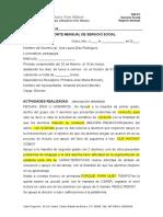 Ssf4-7 Reporte Mensual de Servicio Social