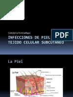 Infecciones de piel y tejido celular subcutaneo
