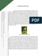 145198412-Bab-II-Tinjauan-Pustaka-Teh.pdf