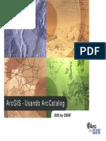 Arcgis & Arccatalog.pdf