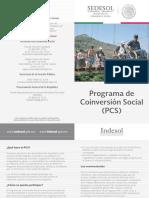 PCS_díptico_2014