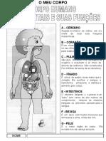 informaosobreasfunesdonossocorpo-111024120321-phpapp01