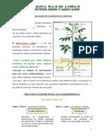 Biologia Das Plantas