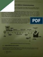 Correas Mauri PDF Fotos