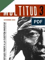 Multitud nº3- El estado frente a la cuestión mapuche.