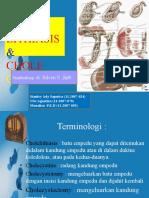 224989358-Cholelithiasis-Br.ppt