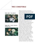 Ciuperci-comestibile.pdf