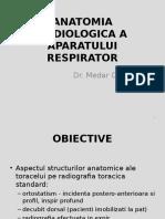 Anatomia Toracelui