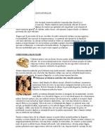 4. Cresterea Reproducatorilor - Matci Si Trantorilor