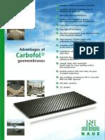 Brochure - Advantages of CARBOFOL Geomembranes.pdf