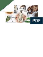 Gambar Textbook