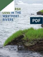 Salt Marsh Loss in the Westport Rivers