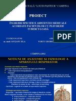 Proiect Voicu Madalina Georgiana
