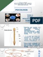 Tema 2 -Bases biológicas de la Cx _Psicología