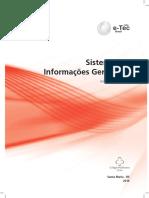 arte_sistemas_informacoes_gerenciais.pdf