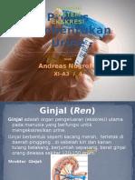 91683594-Proses-Pembentukan-Urine.pptx