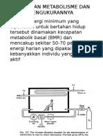 Kecepatan Metabolisme Dan Pengukurannya