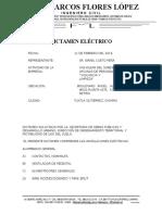 Dictamen Electrico