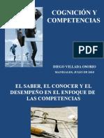 COGNICION Y COMPETENCIAS