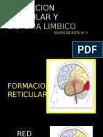Formacion Reticular y Limbico Expo