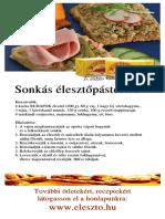 eleszto_szorolap_2