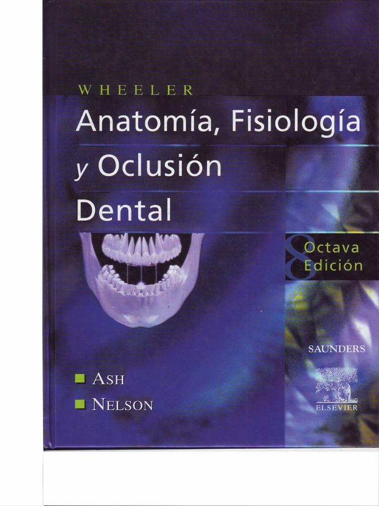 Vistoso Fundamentos De La Anatomía Y La Fisiología Octava Edición ...